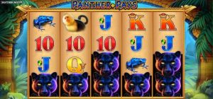 Panther Pays